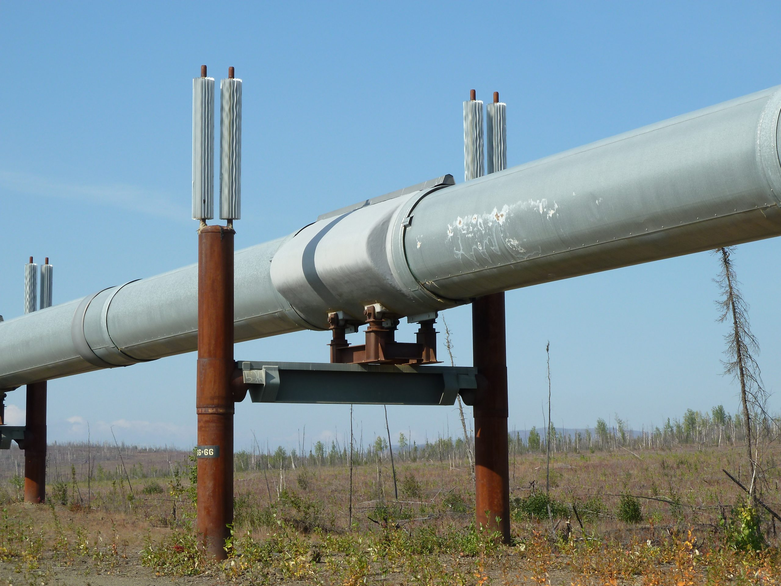 Radreise Alaska 2010 - Alaska-Pipeline am Dalton Highway