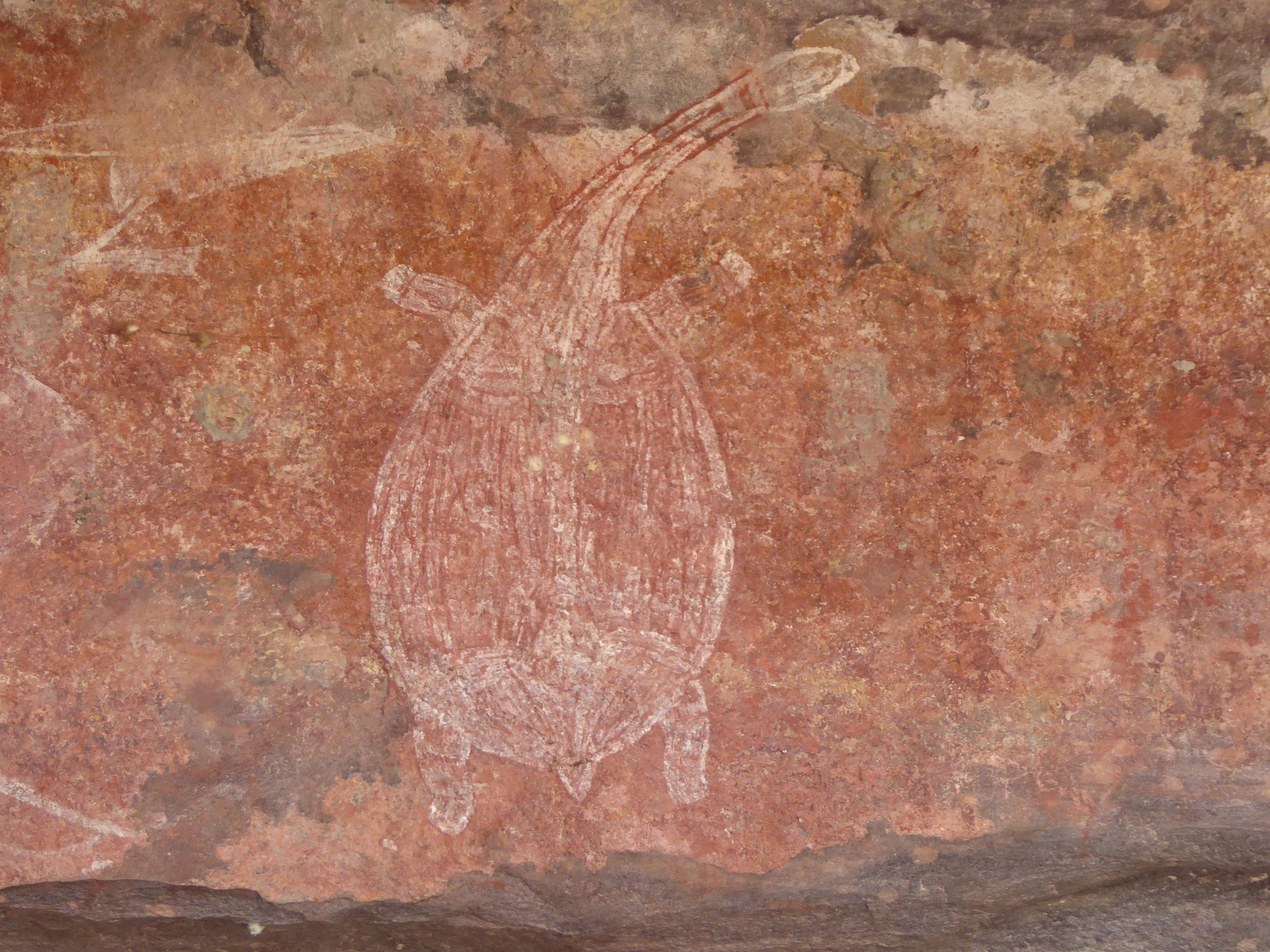 Radreise Australien 2016 - Kakadu NP - Felszeichnung Schildkröte - Ubirr