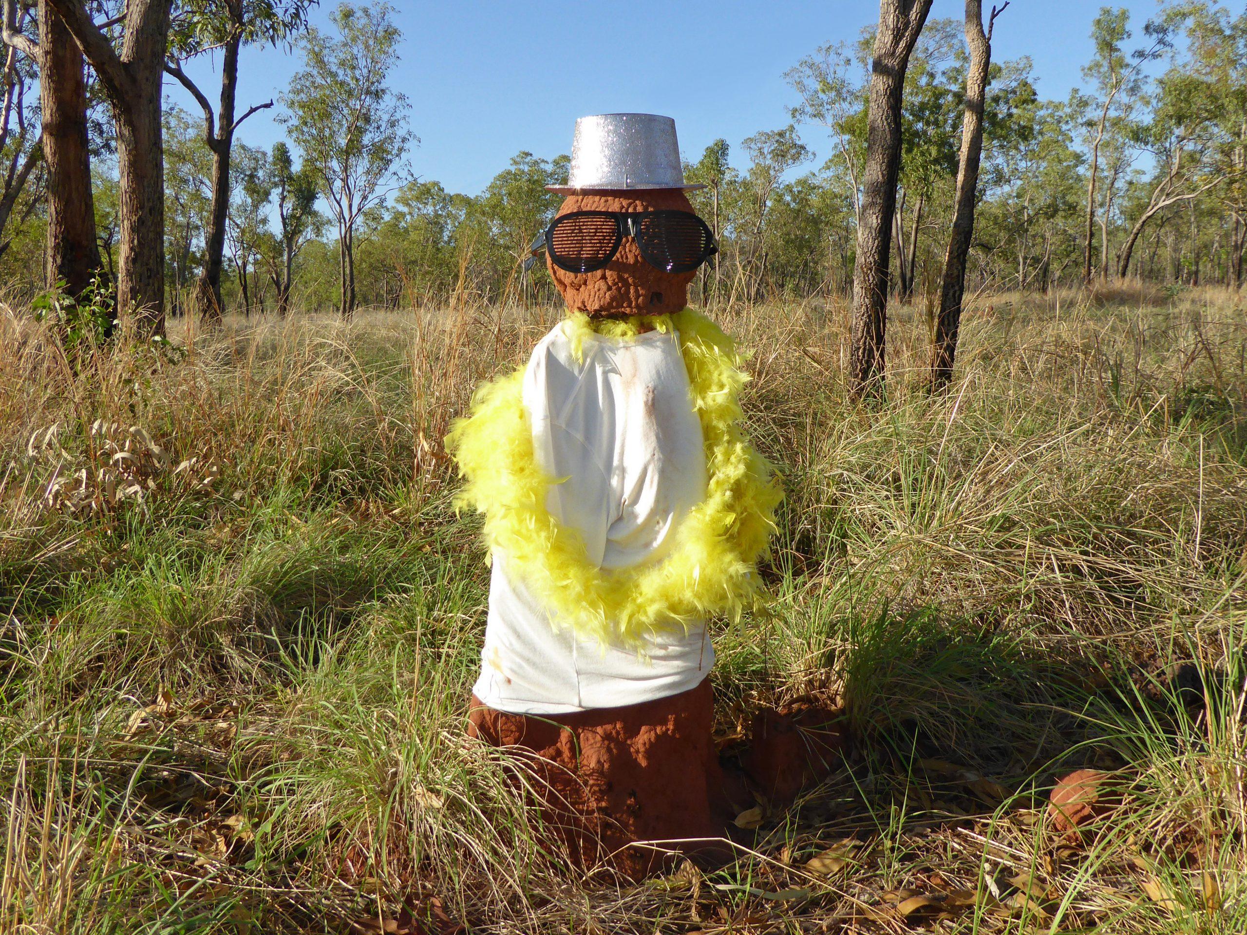 Radreise Australien 2016 - Stuart Highway - Termitenhügel