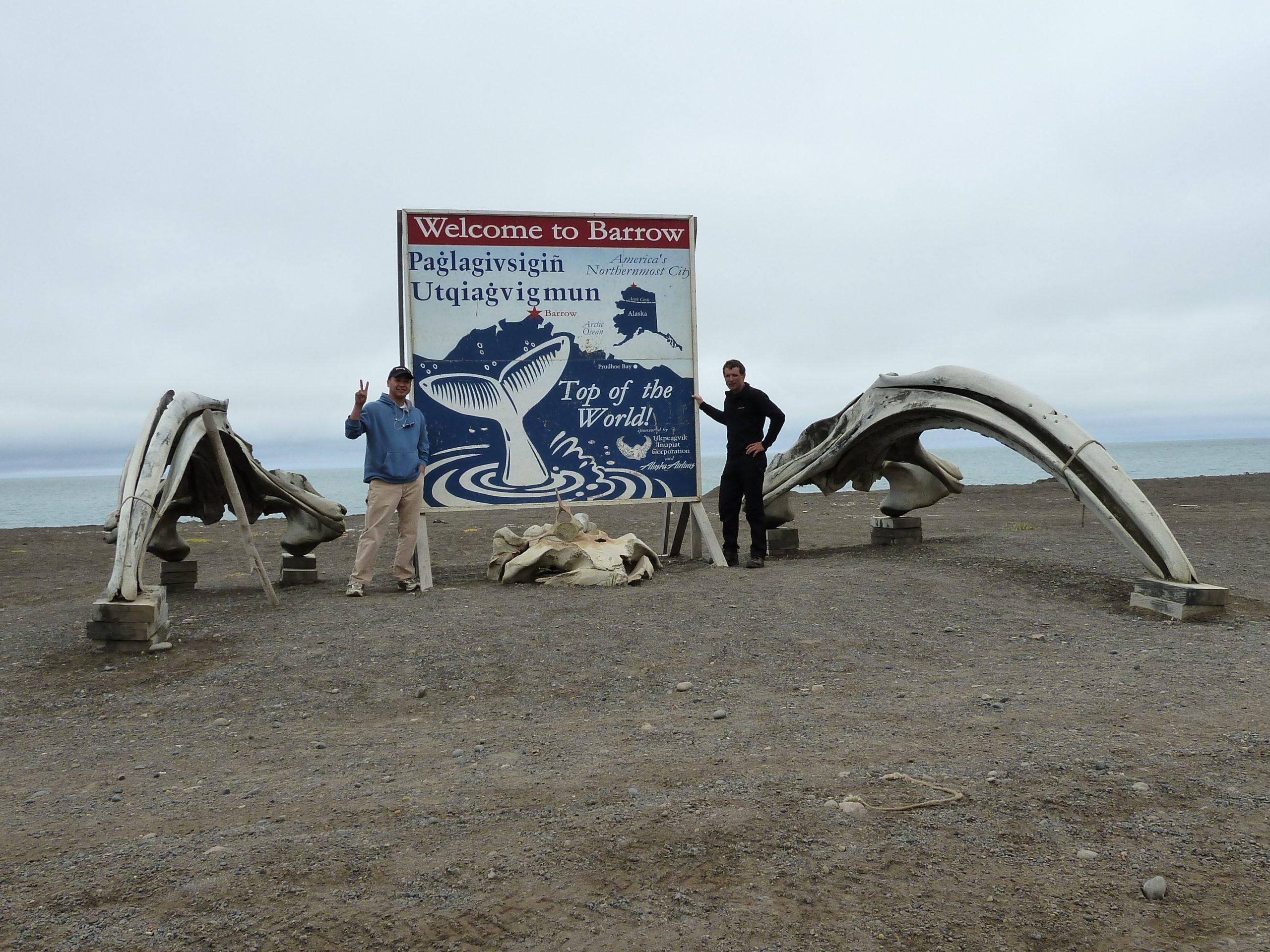 Radreise Alaska 2010 - Walknochen am Strand bei Barrow
